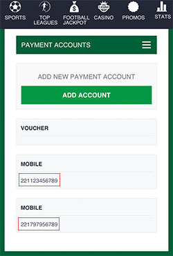 Your registered mobile money number